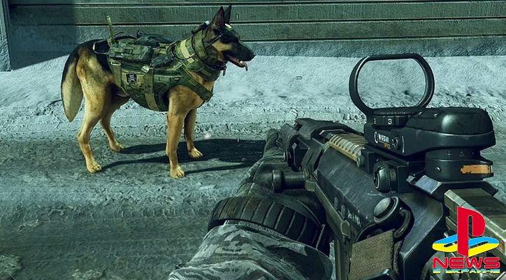 Издатель Call of Duty обиделся на уборщиков собачьих фекалий
